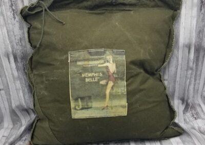 Pillow #005